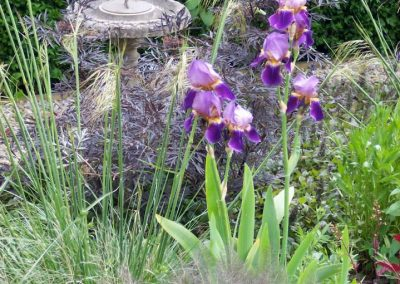 Country_gardens_01