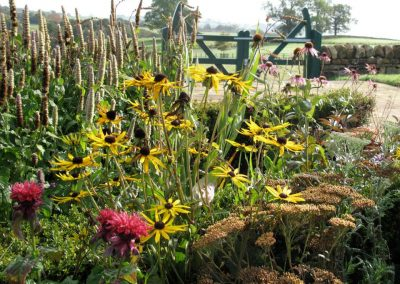 Country_gardens_17