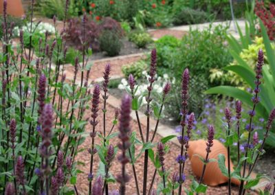 Courtyard_gardens_10