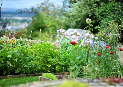 Rustic_gardens_08