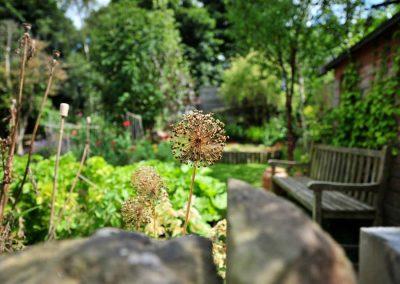 Rustic_gardens_11
