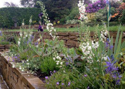 Sloping_gardens_26