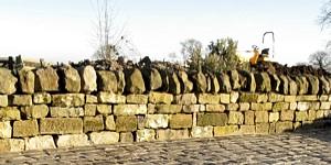 dry-stone-walls-kingdon-gardens