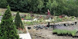 garden-planting-design-skipton-ilkley