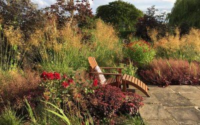Family Garden Design – Party Time!