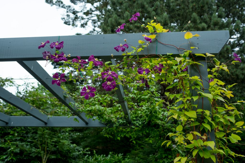 Contemporary pergola. Garden design and build, Leeds