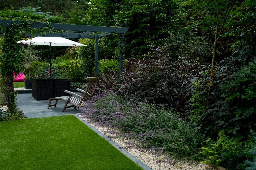 Modern garden design and build. Architectural planting