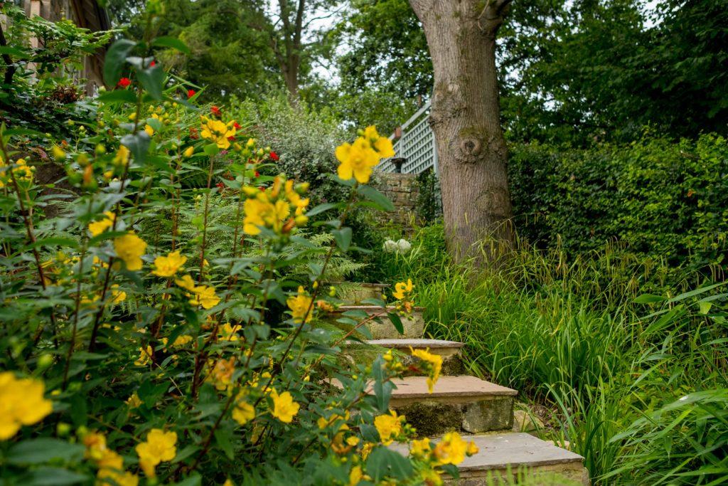 Stone steps. Modern garden design, Leeds