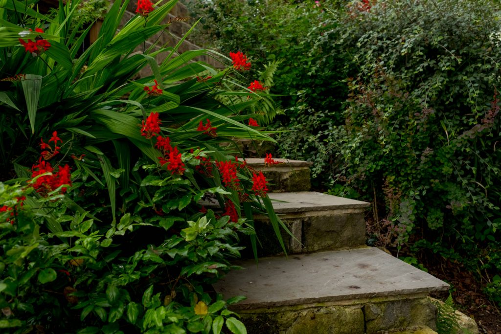 Garden steps. Leeds garden design and build