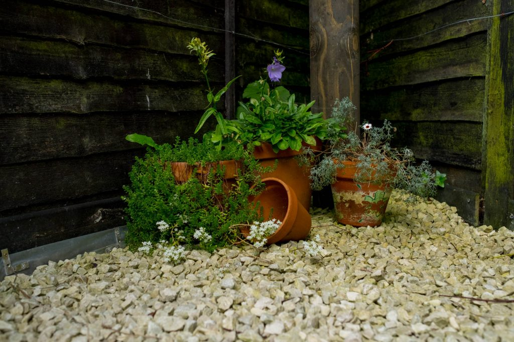 Pots in small garden. Leeds garden design and build