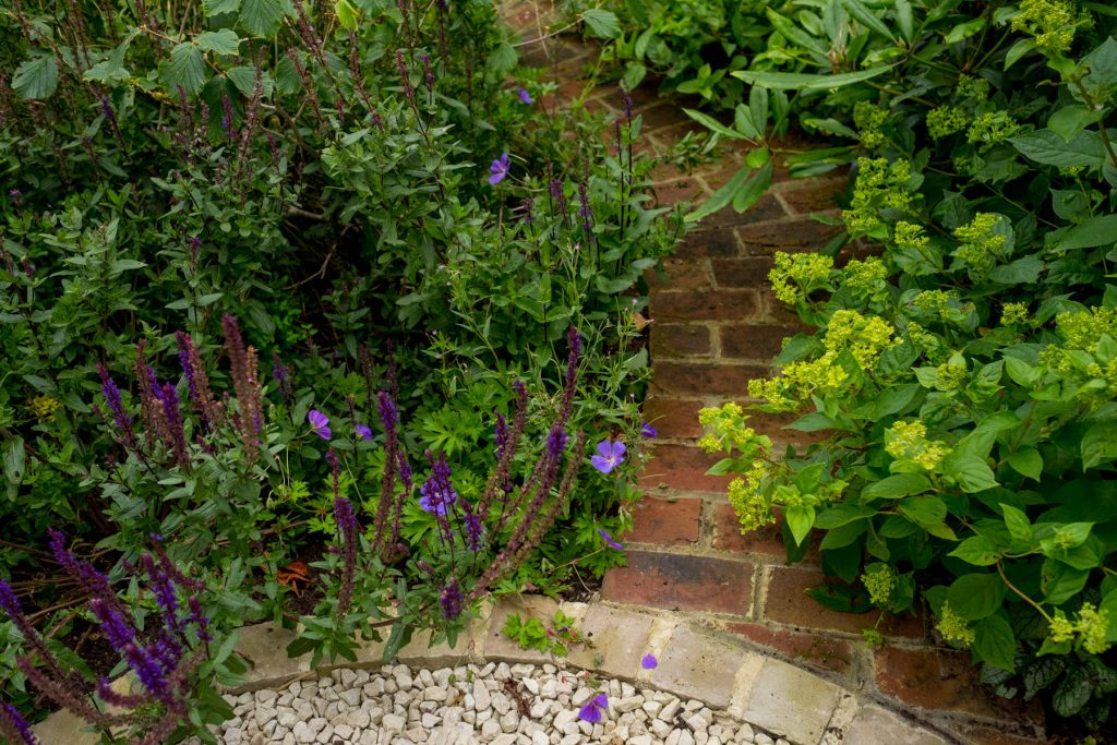 Reclaimed bricks and gravel garden with herbs.