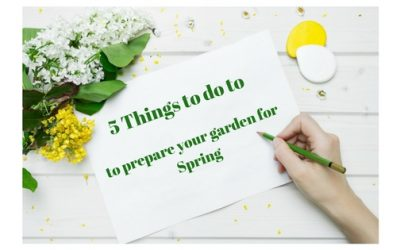 5 Things to do to prepare your Garden for Spring
