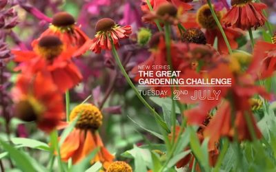 The Great Gardening Challenge