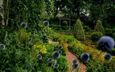 Garden Design and Build