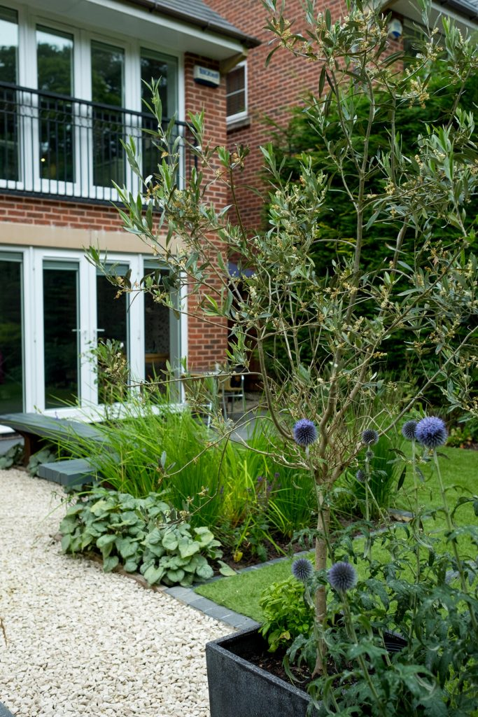 Contemporary garden space. Modern garden design and build. Yorks