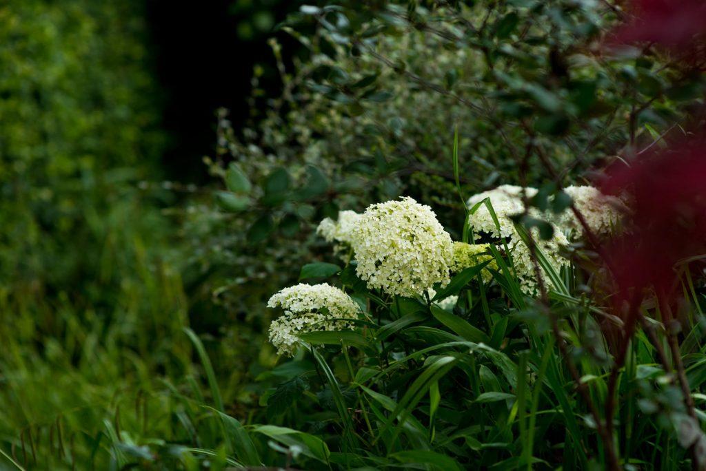 Garden design and build, Leeds, harrogate, york