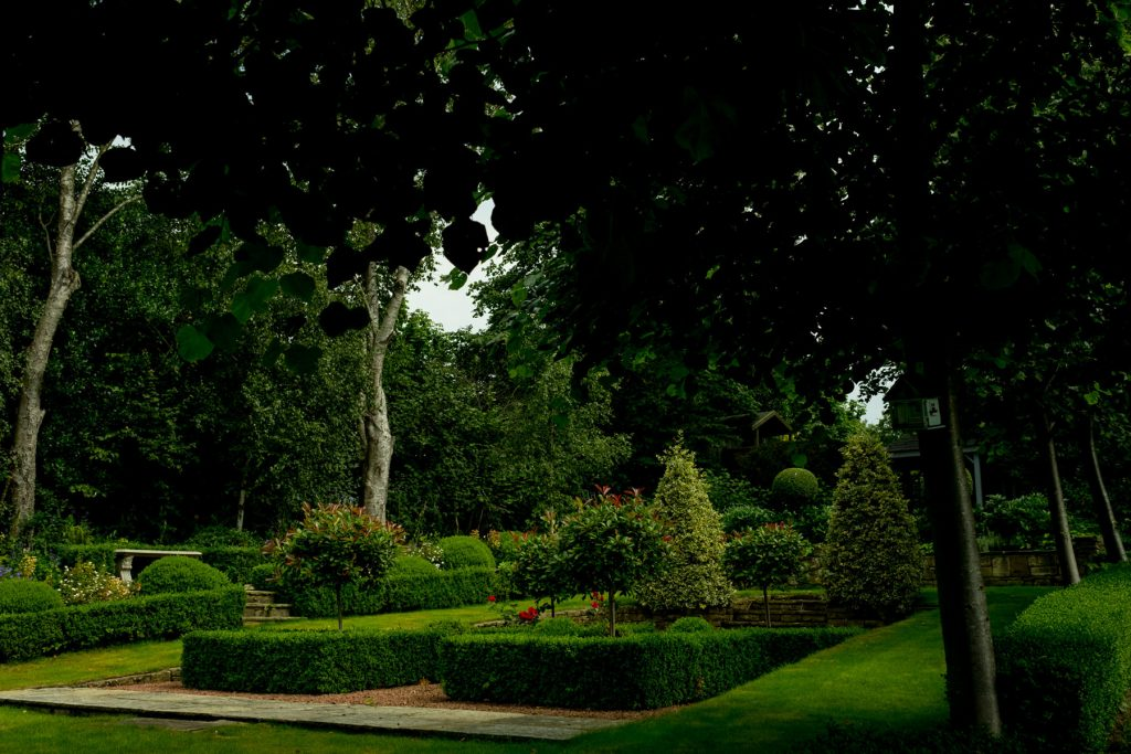 Formal English Garden with box hedges and lime trees. Harrogate