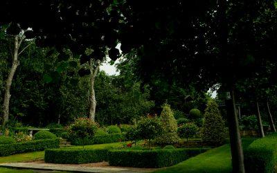 Modern English Country Garden
