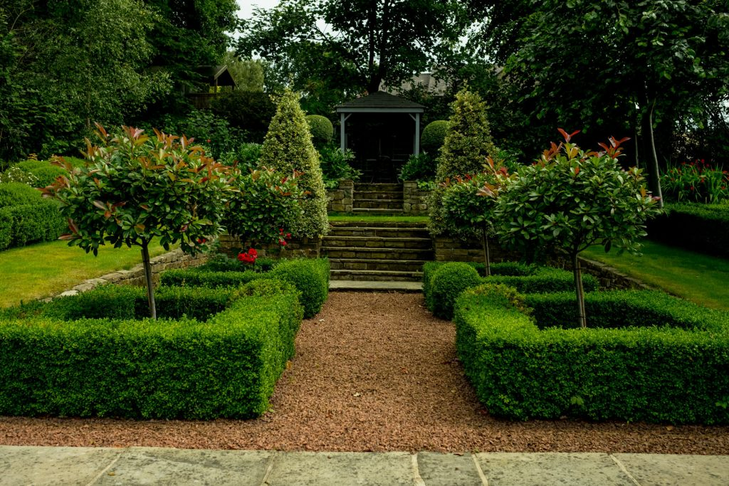 Box hedge parterre and york stone steps. Garden design and build