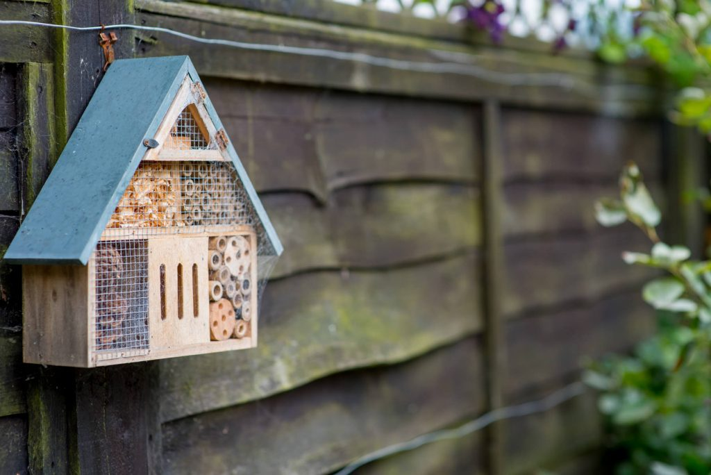 Insect house in small garden