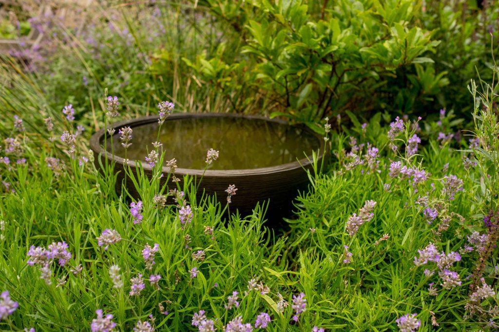 Small water feature. Half tub water feature. Yorkshire garden de