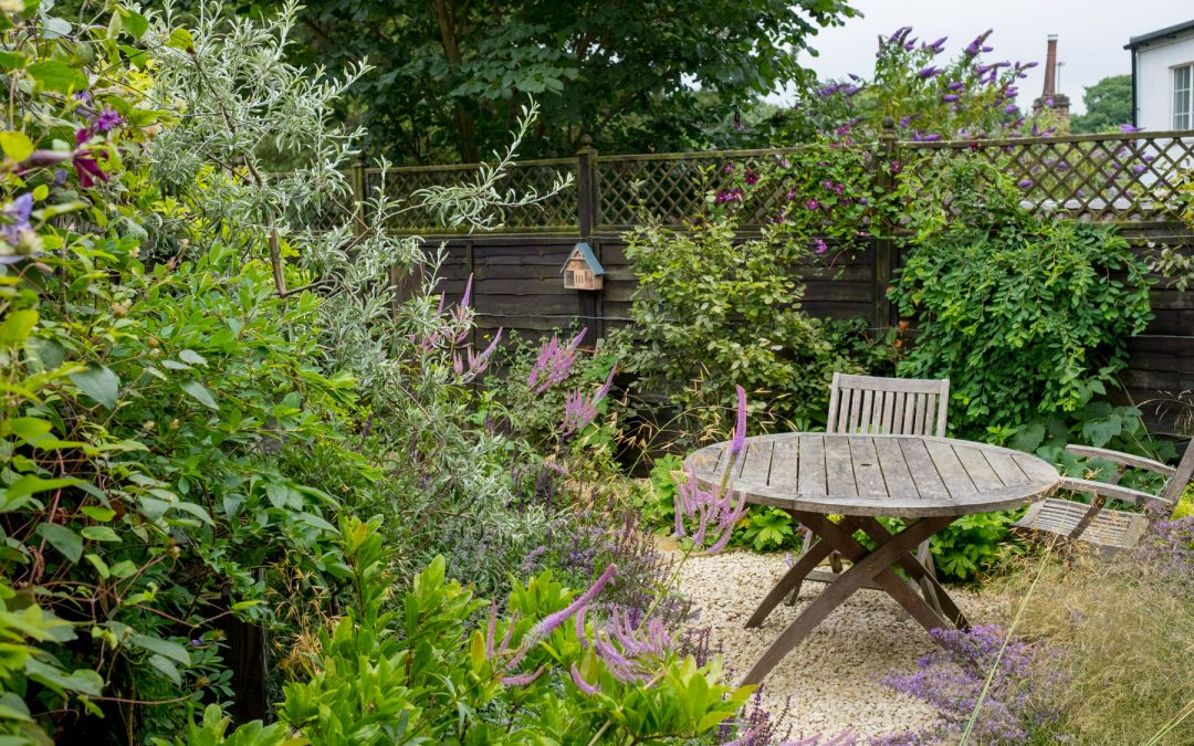 Small Garden Design in Leeds - Kingdom Gardens