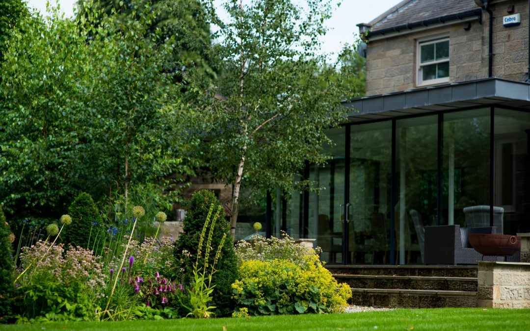 Contemporary extension with herbaceous planting. Harrogate Garde
