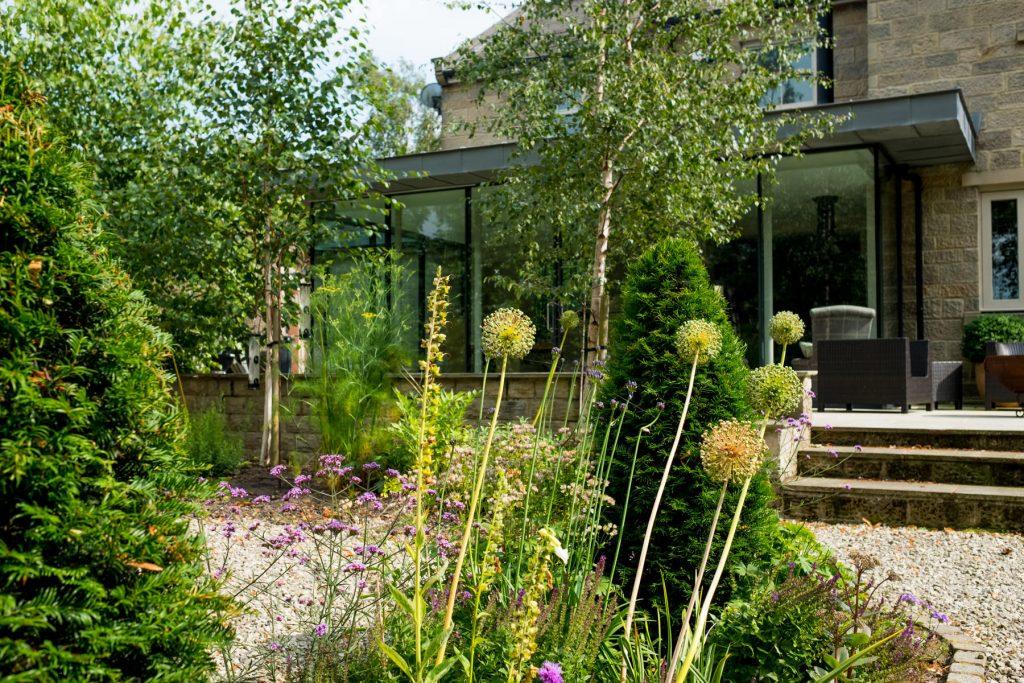 Alliums and Verbena herbaceous border. Harrogate Garden DEsign a