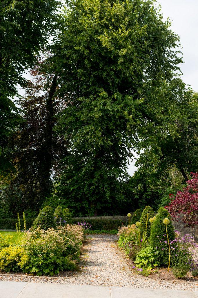Herbaceous border with evergreen yew. Harrogate Garden DEsigners